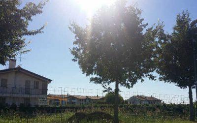 Terreno edificabile per realizzazione di villetta singola